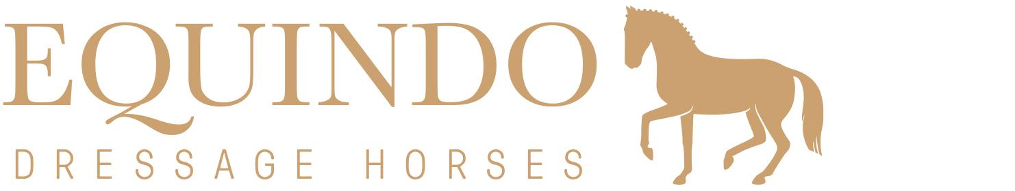 Equindo Dressage - equindo dressage rees